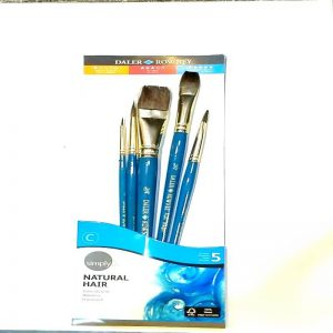 216910500 Daler Rowney Simply Water Brush 5 piece